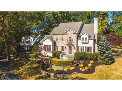 38 E RIDGE RD Montgomery,NJ MLS#3625979