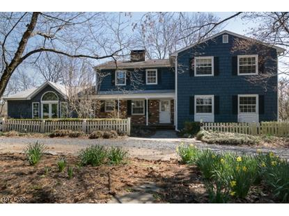 297 RIVER RD Montgomery,NJ MLS#3626415