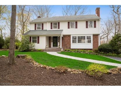 174 OAKS RD  Long Hill Twp, NJ MLS# 3628483