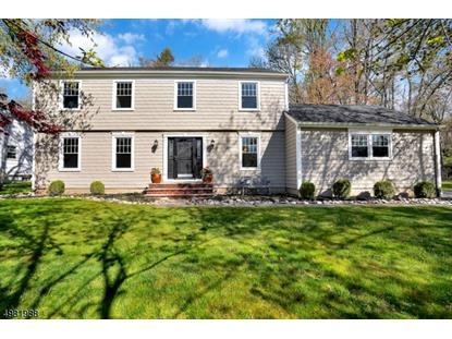 88 COTTAGE PL  Long Hill Twp, NJ MLS# 3633341