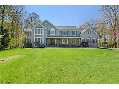 10 COUNTRY WOODS DR  Lebanon Twp, NJ MLS# 3633416