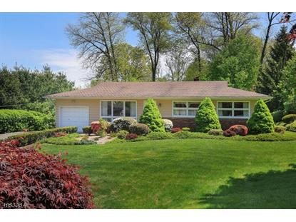17 LAND ST  Long Hill Twp, NJ MLS# 3634577