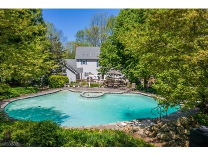 132 Hawks Schoolhouse Rd.  Holland Township, NJ MLS# 3634697