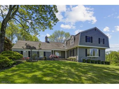 16 FENVIEW RD  Long Hill Twp, NJ MLS# 3635245