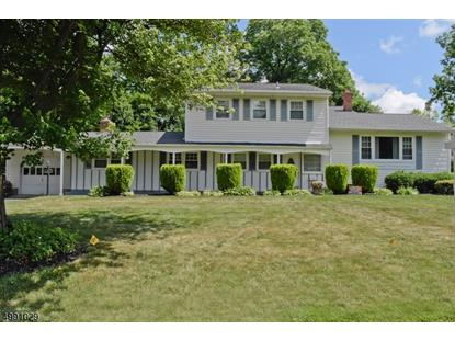 30 DEERFIELD DR  Florham Park, NJ MLS# 3642005