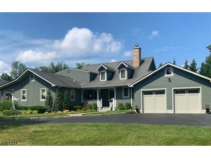119 CRESCENT RD  Florham Park, NJ MLS# 3642776