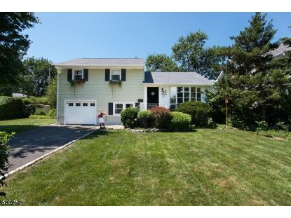 47 LEWIS AVE  Summit, NJ MLS# 3652749