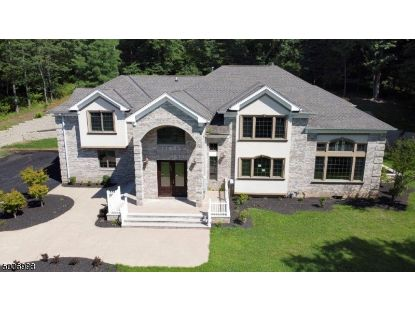 125 MOUNTAIN AVE  Long Hill Twp, NJ MLS# 3655608