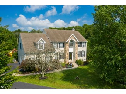 12 HILL HOLLOW RD  Holland Township, NJ MLS# 3656046