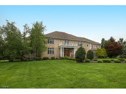 380 MINEBROOK RD  Far Hills, NJ MLS# 3662672