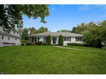 14 ARGYLE CT  Summit, NJ MLS# 3663287