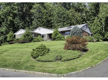 50 LEAMOOR DR  Morris Plains, NJ MLS# 3664003