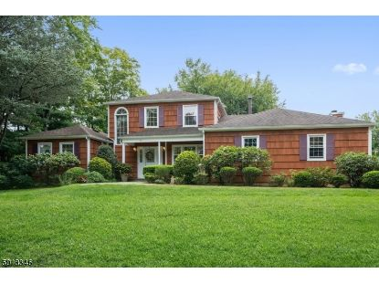 1 OLD STONE LN  Hanover Twp, NJ MLS# 3665843