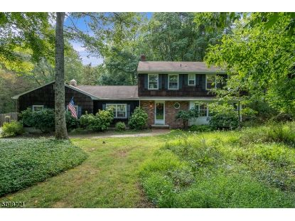 747 BACKHUS ESTATE RD  Lebanon Twp, NJ MLS# 3667050