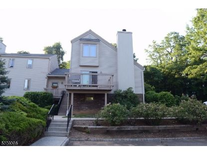 1F SOMERSET HILLS CT  Bernardsville, NJ MLS# 3667729