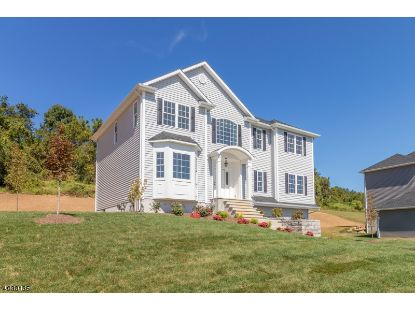 20 Mountain View  Lopatcong, NJ MLS# 3669097