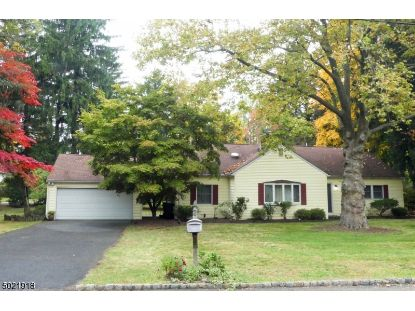 2 WHITE BIRCH DR  Hanover Twp, NJ MLS# 3669246