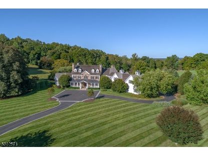 50 SPRING HILL RD  Mendham, NJ MLS# 3670310