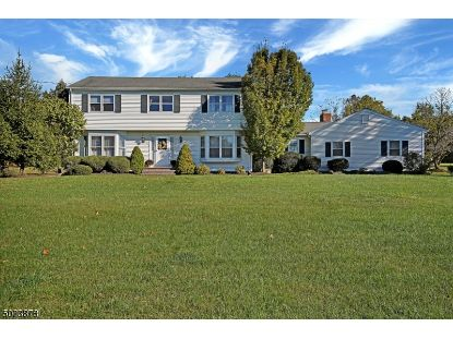 142 READINGTON RD  Readington Twp, NJ MLS# 3671001