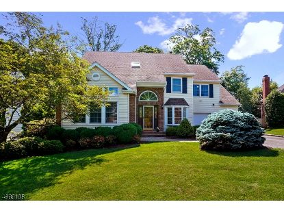9 BAUMGARTNER DR  Madison, NJ MLS# 3672148