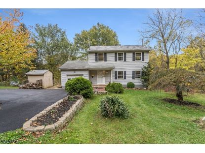 3 MUSCONETCONG RIVER RD  Lebanon Township, NJ MLS# 3672377