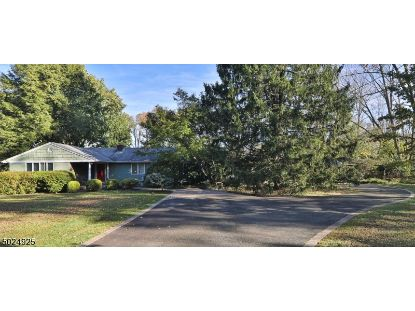 128 KOSCIUSZKO RD  Readington Twp, NJ MLS# 3672495