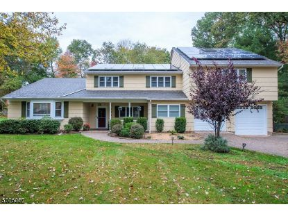 149 REYNOLDS AVE  Hanover Twp, NJ MLS# 3672999