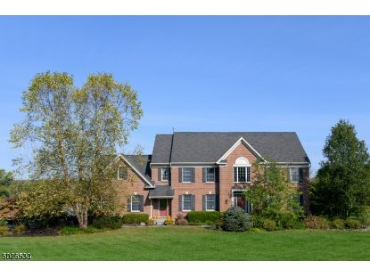 6 STEEPLEVIEW CT  West Amwell, NJ MLS# 3673670