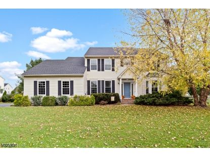 39 MEADOWVIEW DR  Lopatcong, NJ MLS# 3673825