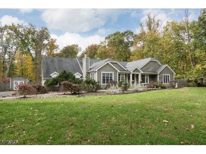 250 GOAT HILL RD  West Amwell, NJ MLS# 3673909