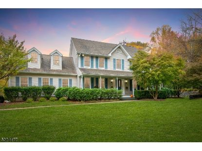 225 MT AIRY ROAD  Lebanon Twp, NJ MLS# 3673939