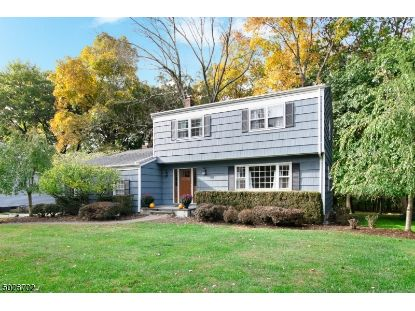 26 FLORIE FARM RD  Mendham, NJ MLS# 3674232