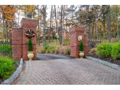 206 TAYLORS MILL ROAD  Readington Twp, NJ MLS# 3674267