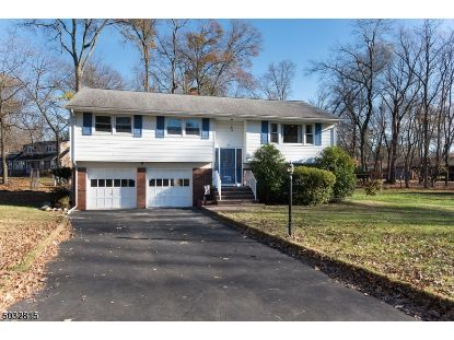 15 BLUE HILL TER  Green Brook, NJ MLS# 3679117