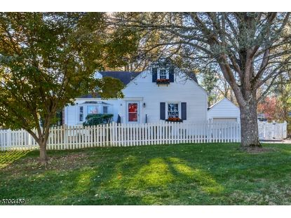25 EASTERN AVE  Bernardsville, NJ MLS# 3679576
