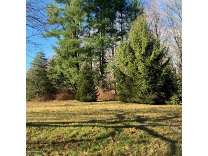 42 OAK RD  Boonton Township, NJ MLS# 3682987
