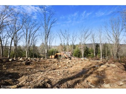 900 BERKSHIRE VALLEY RD  Jefferson Twp, NJ MLS# 3683772
