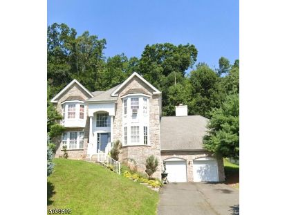 234 W END AVE  Green Brook, NJ MLS# 3684172