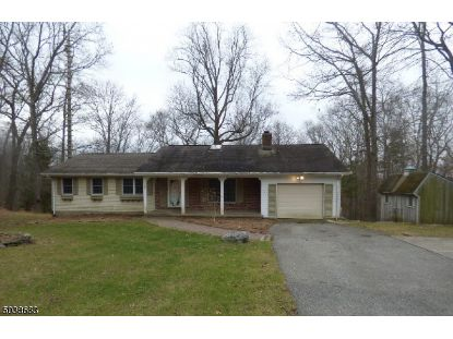 1 FROG POND RD  Blairstown, NJ MLS# 3684188