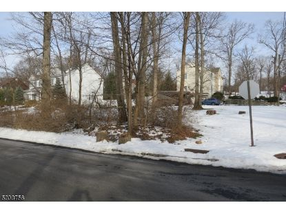 300 TOP AVE  Green Brook, NJ MLS# 3684208