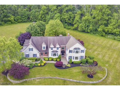 6 LEBANON FARM LN  Lebanon Twp, NJ MLS# 3684853