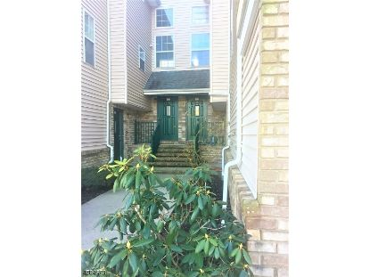 106 RIP VAN DAM CT  Montgomery, NJ MLS# 3685143