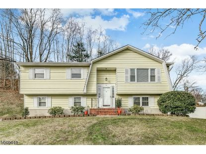 10 LUNDY TER  Butler, NJ MLS# 3685850