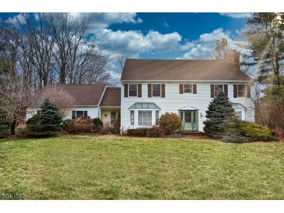 7 CHESTERBROOK RD  Chester, NJ MLS# 3686271