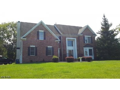 20 SOUTHGATE DR  Clinton Twp, NJ MLS# 3686821