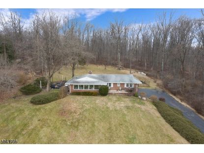 28 FOX GRAPE RD  Raritan Township, NJ MLS# 3686846