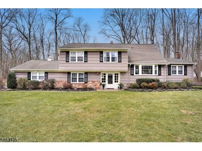154 RIVERSIDE DR  Bernards Township, NJ MLS# 3687244