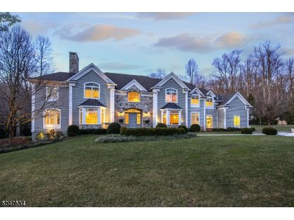 20 JOCKEY HOLLOW RD  Bernardsville, NJ MLS# 3688450