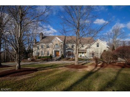 51 POST KENNEL RD  Bernardsville, NJ MLS# 3688469