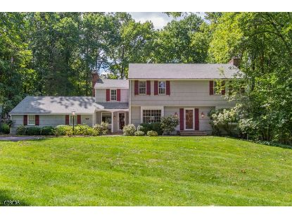 156 PEACHCROFT DR  Bernardsville, NJ MLS# 3690141